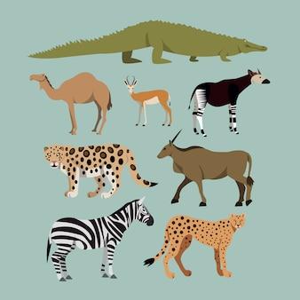 Vector conjunto de diferentes animais africanos