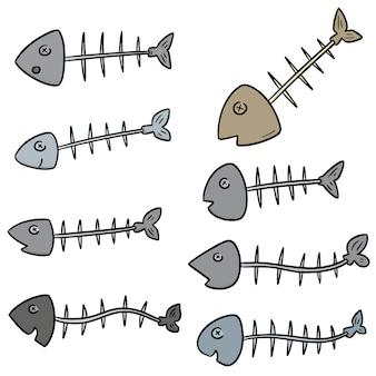 Vector conjunto de espinha de peixe