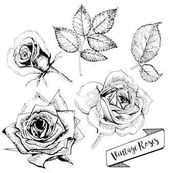 Vector Tattoo Rosas Baixe Vetores Fotos E Arquivos Psd Gratis