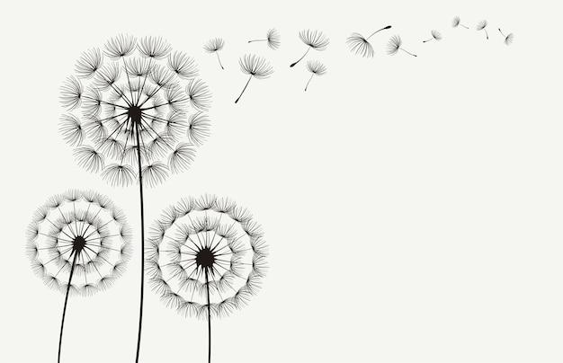 Vector dandelion silhueta de sopro