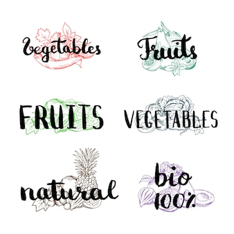 Vector doodle handdrawn colorido pilhas de frutas e legumes com vegan, orgânica, natural lettering