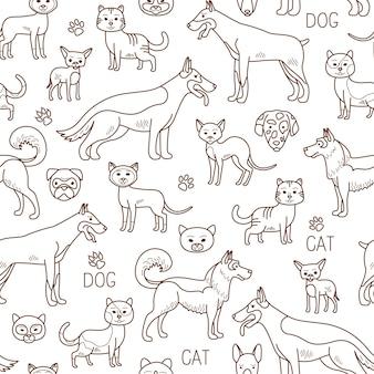Vector doodle padrão de animais de estimação