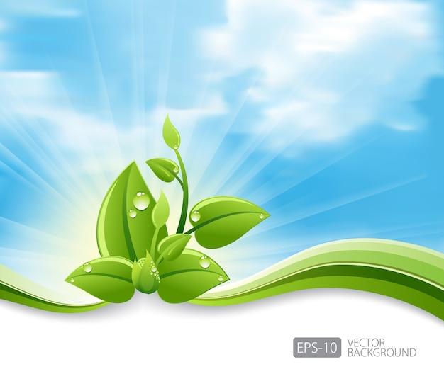 Vector eco folhas e onda verde