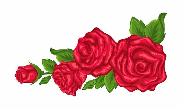 Vector fundo branco de canto com rosas vermelhas e folhas verdes.