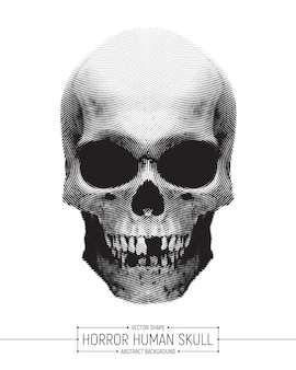 Vector humano horror crânio art ilustração