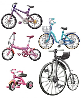 Vector isolado 5 bicicletas diferentes.