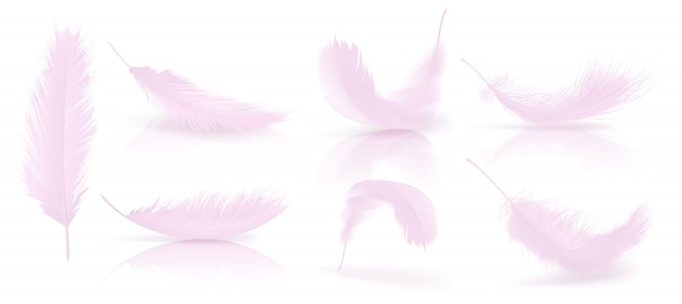 Vector realista 3d conjunto de penas de pássaro rosa