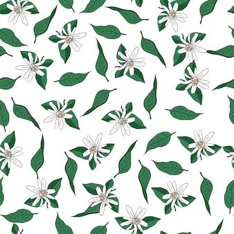 Vector sem costura padrão de flores e folhas