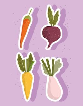 Vegetais alimentos frescos cenouras cebola e beterraba conjunto de ícones de ilustração