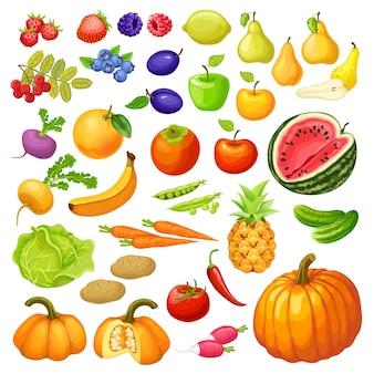 Vegetais e frutas.