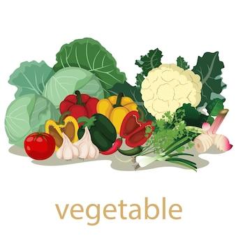 Vegetais frescos isolados