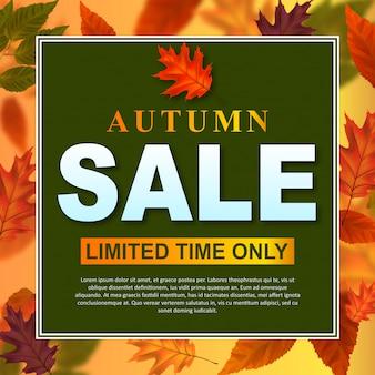 Venda de outono de quadro de folhas