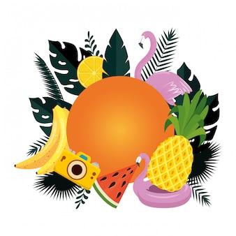Verão circular com folhas e conjunto de ícones