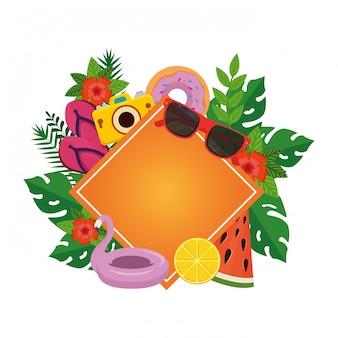 Verão com plantas de folhas e conjunto de ícones