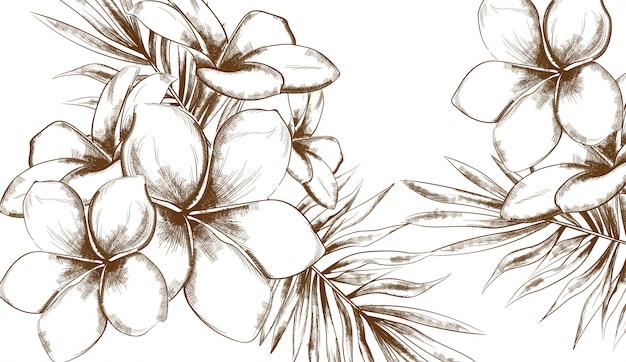 Verão de flores tropicais