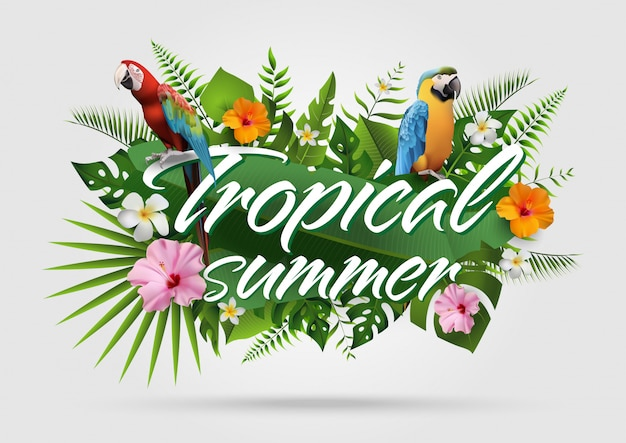 Verão na moda tropical background25