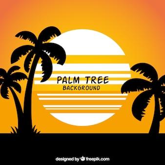 Verão, paisagem, fundo, silhuetas, palma, árvores