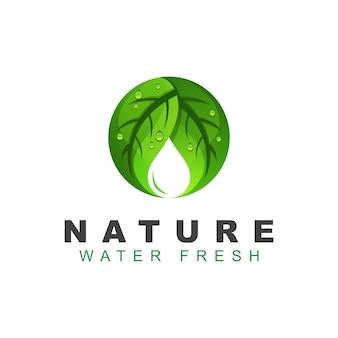 Verde folha ou folhas natureza com logotipo de gota de água. modelo de design de logotipo fresco de água natural