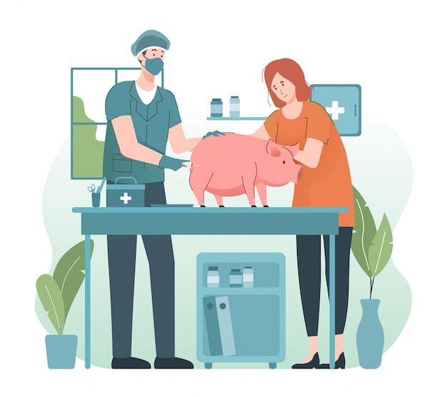 Veterinário dando injeção a um porco na clínica veterinária