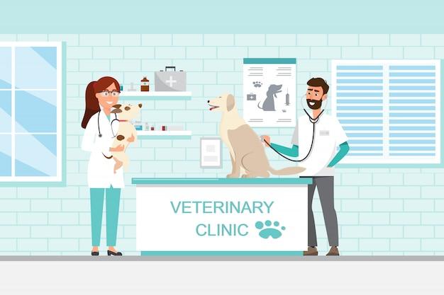 Veterinário e médico com cachorro e gato no balcão na clínica veterinária