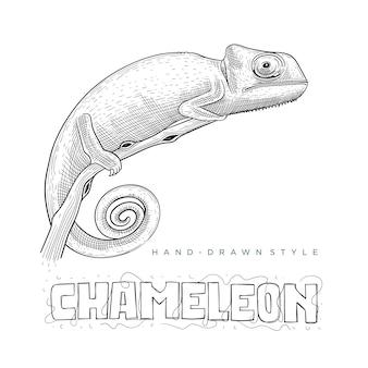 Vetor camaleão em um galho de árvore. ilustração animal desenhada à mão