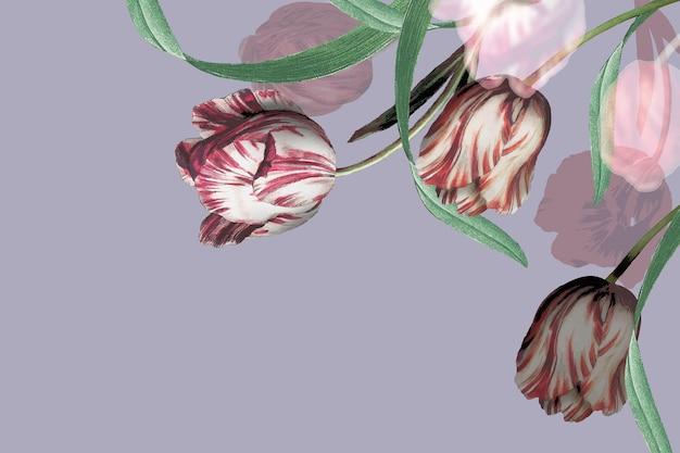 Vetor de borda de tulipa em fundo roxo