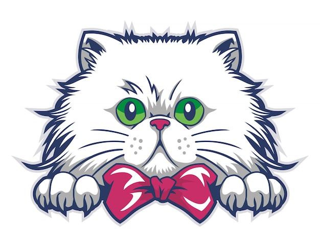 Vetor de caixa de gato engraçado