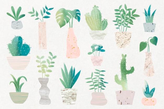 Vetor de coleção de cactos de botânica verde