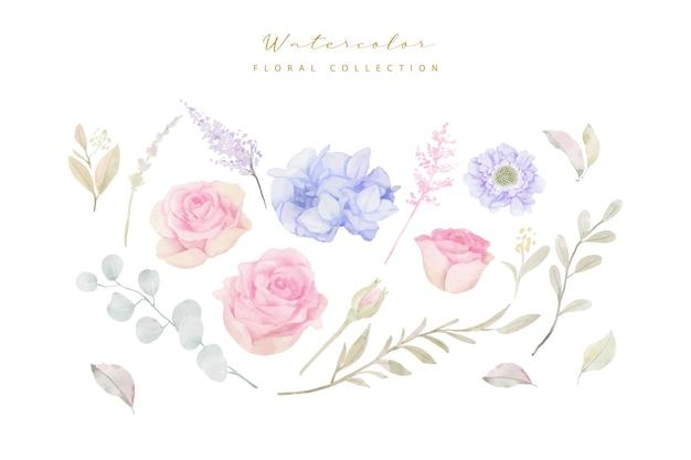 Vetor de coleção de flores em aquarela