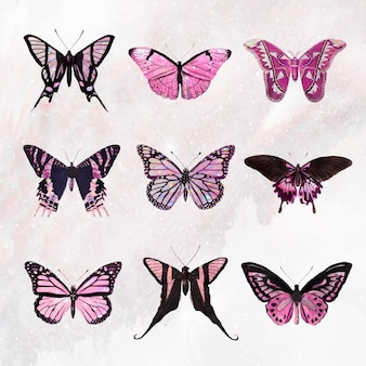 Vetor de conjunto de elementos de design rosa holográfico e brilhante de borboleta