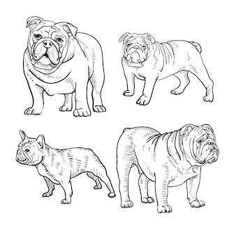 Vetor de contorno de cães