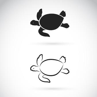 Vetor de desenho de duas tartarugas em fundo branco répteis anfíbios