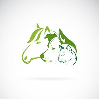 Vetor de desenho de grupo de mamíferos em fundo branco cavalo cão gato animais animais de estimação