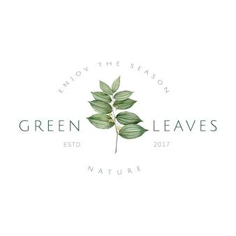 Vetor de design de logotipo de folhas verdes