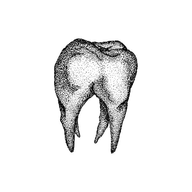 Vetor de dotwork de dente. handdrawn sketch ilustração de tatuagem.