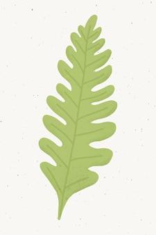 Vetor de elemento de design de folha de carvalho verde