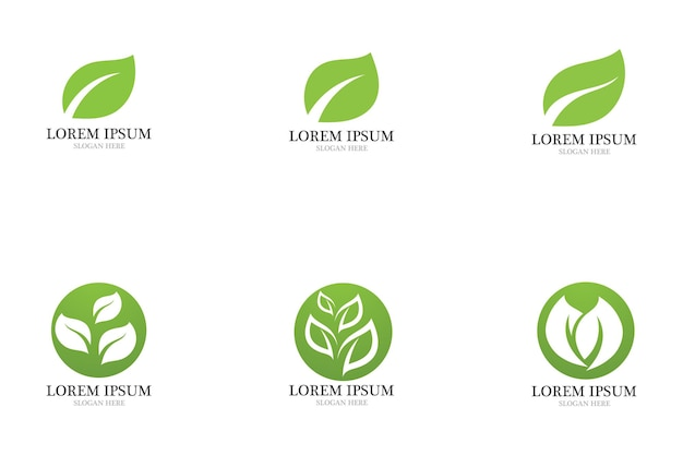 Vetor de elemento de natureza de ecologia de logotipo de folha