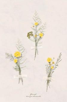 Vetor de elemento de outono para álbum de recortes de flores secas