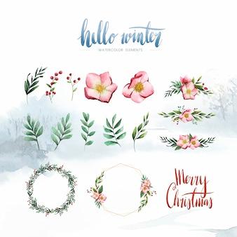 Vetor de flores e elementos de inverno em aquarela