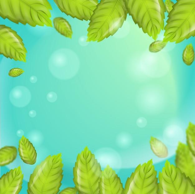 Vetor de folhas de hortelã fresca ilustração realista