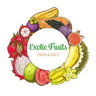 Vetor de frutas tropicais bandeira redonda moldura isolada