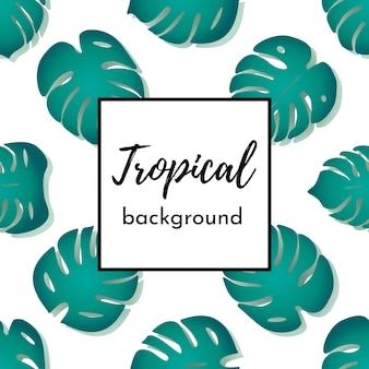 Vetor de fundo. cartão de modelo ou cartaz com folhas de palmeira exóticas verde padrão sem costura isolado