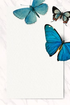 Vetor de fundo com padrão de borboletas azuis