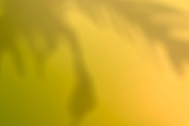 Vetor de fundo gradiente amarelo abstrato com sombra de planta