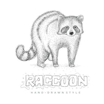 Vetor de guaxinim realista, ilustração animal desenhada à mão