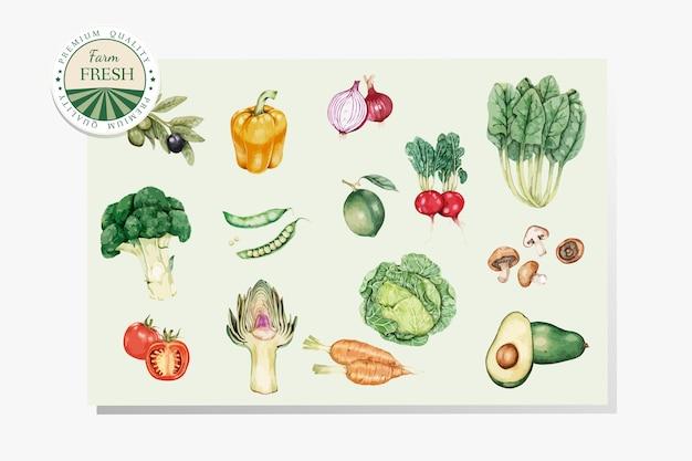 Vetor de legumes frescos e saudáveis