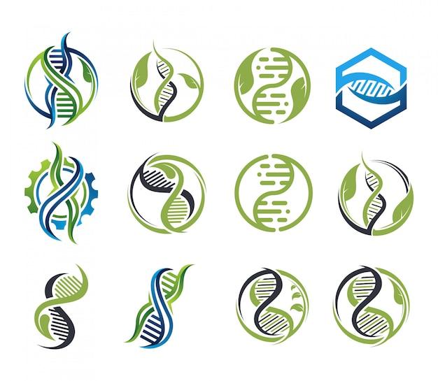 Vetor de logotipo de coleção de dna