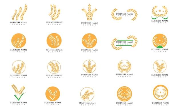 Vetor de logotipo de comida de arroz e arroz