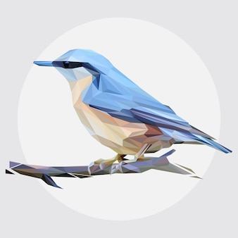 Vetor de lowpoly do pássaro da mola