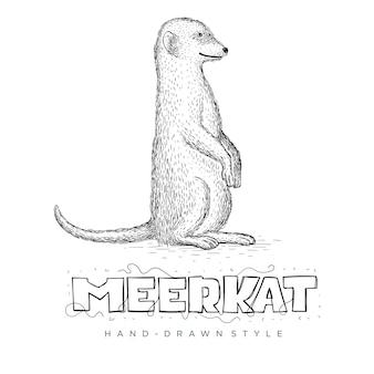 Vetor de meerkat em linha reta. ilustração animal desenhada à mão
